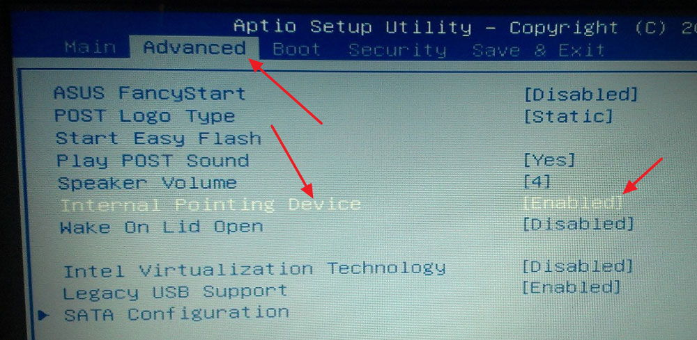 Активация устройства в BIOS