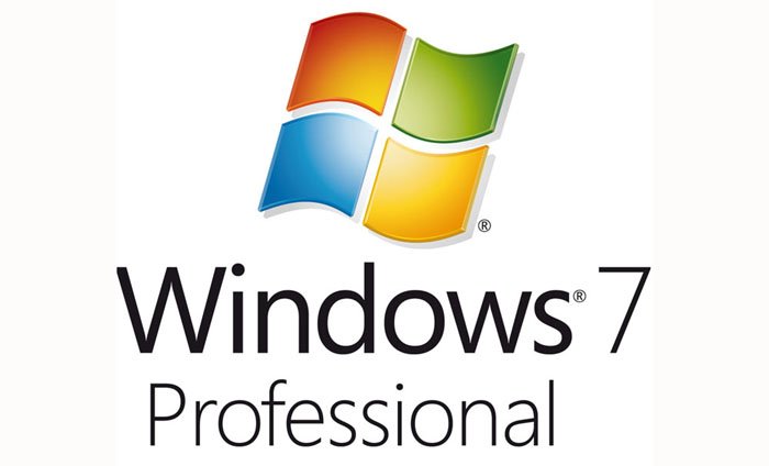 Windows Professional