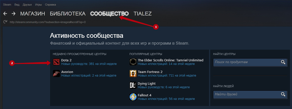 Выбор игрового сообщества