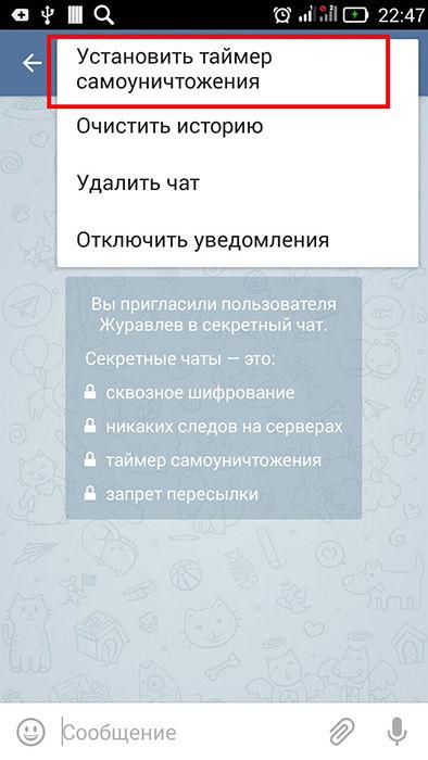 Таймер самоуничтожения в Telegram
