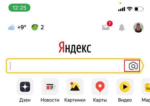 Поиск по картинке в приложении Яндекс