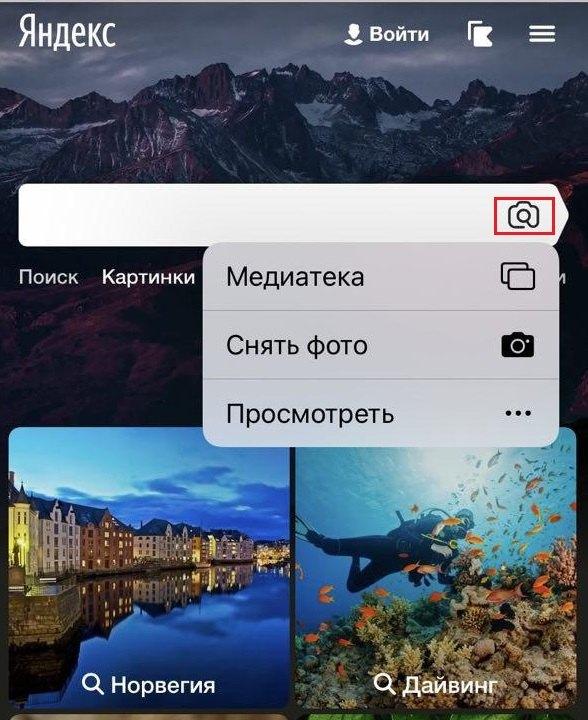 Поиск по картинке в Яндексе