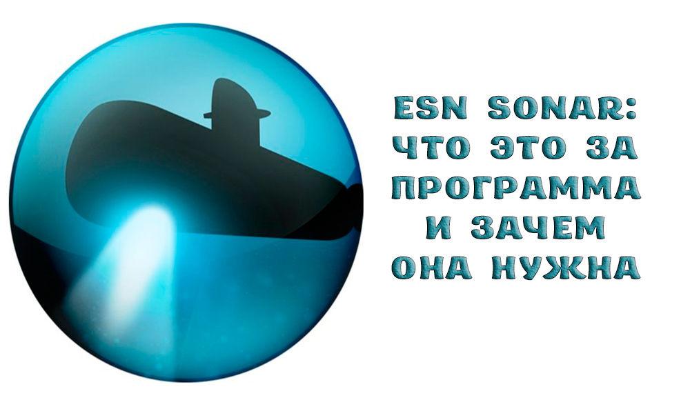 Что такое ESN sonar и зачем она нужна