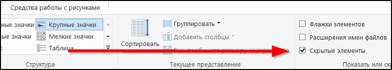 Установка флажка на пункте отображения скрытых файлов