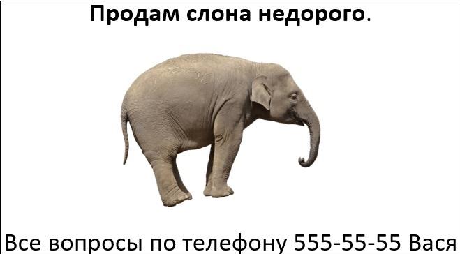 Объявление с изображением слона