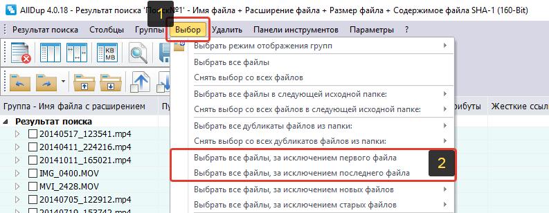 Параметры удаления дубликатов в AllDup