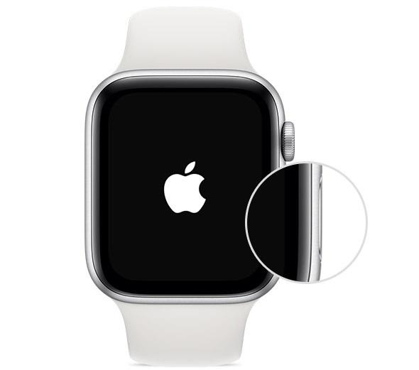 Кнопка включения Apple Watch