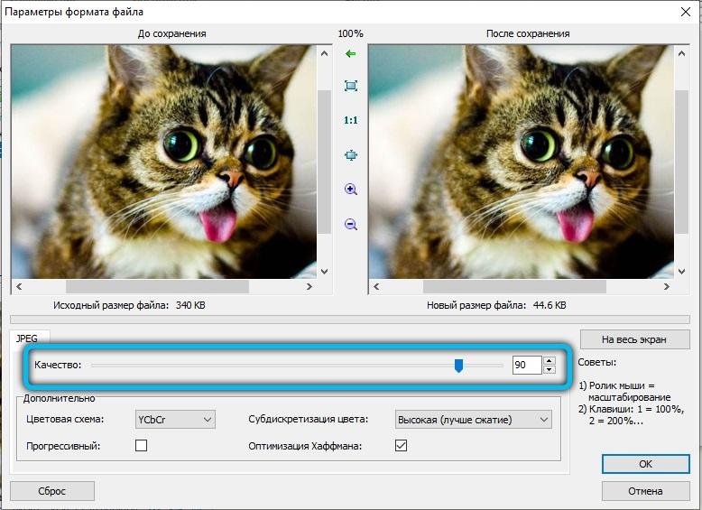Параметры формата файла в FastStone Image Viewer