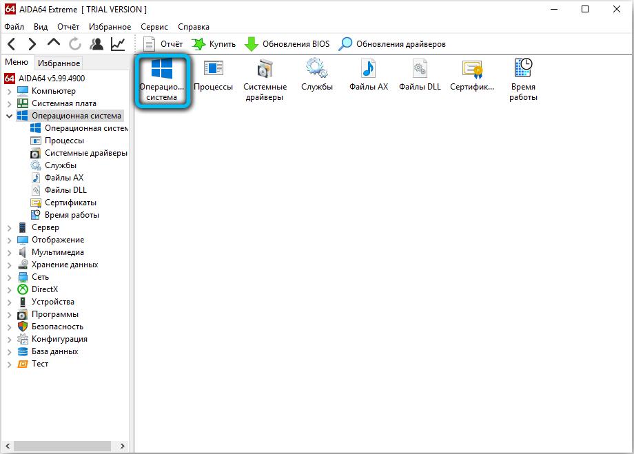 Раздел «Операционная система» в AIDA64