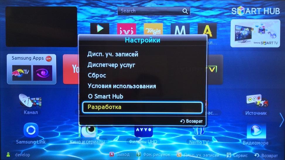 Раздел «Разработка» на телевизоре Самсунг