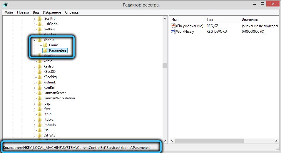 Папка Parameters в папке kbdhid