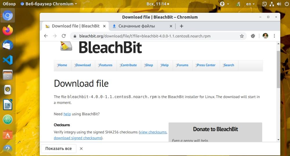 Скачивание пакета BleschBit