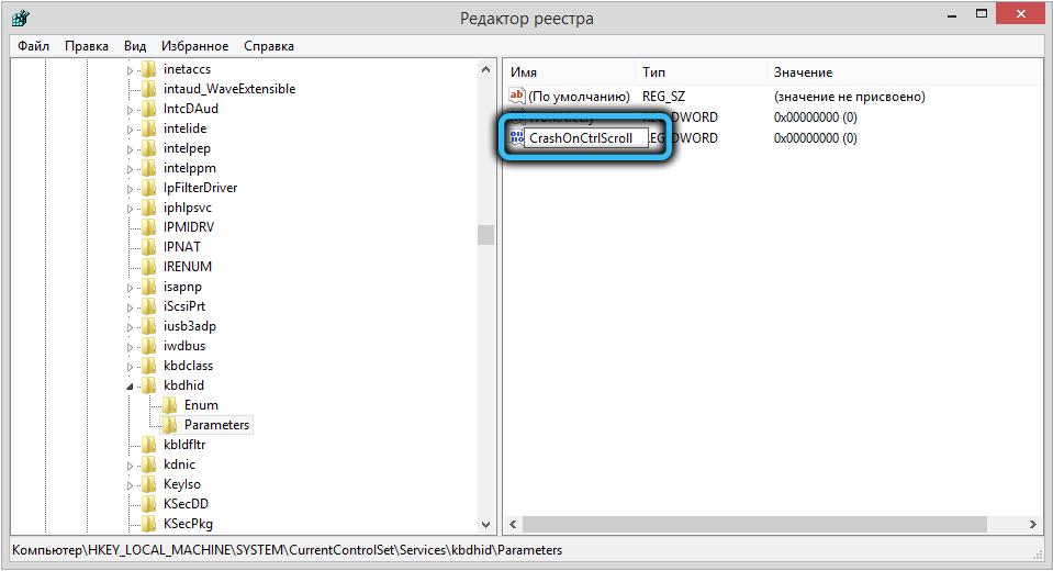 Создание параметра CrashOnCtrlScroll