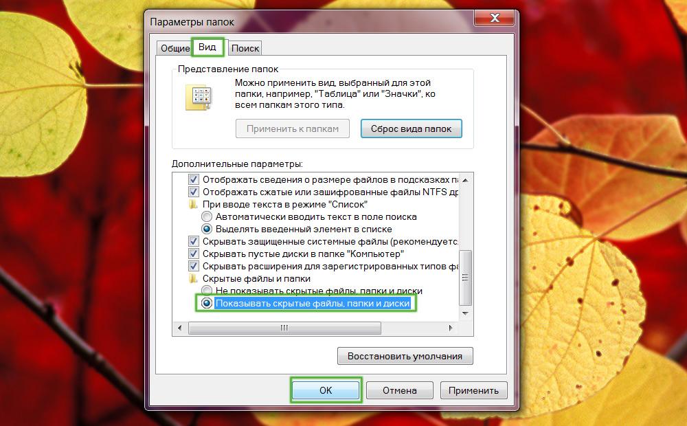 Включение скрытых папок и файлов