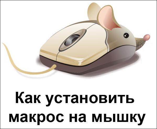 Установка макроса на мышку