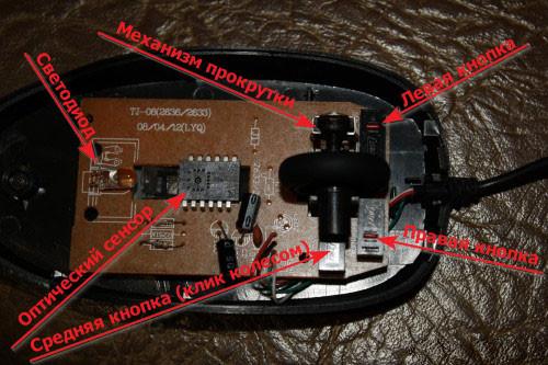 Внутреннее устройство компьютерной мыши