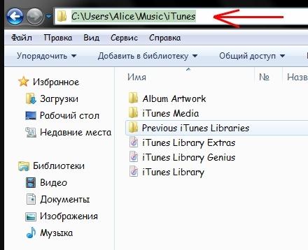 Previous iTunes Libraries